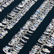Boats In A Marina Print by Don Mason