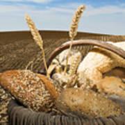 Bread And Wheat Cereal Crops. Art Print by Deyan Georgiev