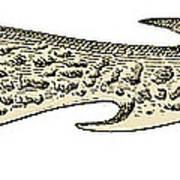 Bronze Age Barbed Point Harpoon Art Print