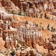 Bryce Canyon - Utah Art Print