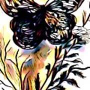 Butterfly Sketch Art Print