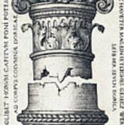 Capital And Base Of A Column Art Print