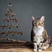 Cat Christmas Art Print
