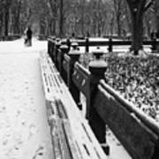 Central Park 8 Art Print