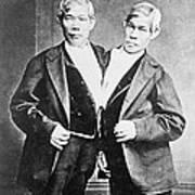 Chang And Eng, Siamese Twins Art Print