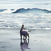 Chihuahua At The Beach Art Print
