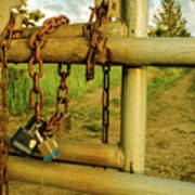 Padlocks And Chains Art Print