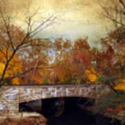 Country Bridge Art Print