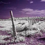 Desertic Landscape Art Print