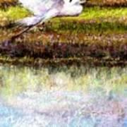 Egret 1 Art Print by Peter R Davidson