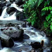 El Yunque Waterfall Art Print