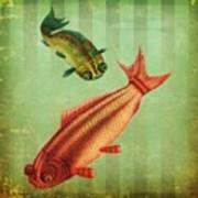 2 Fish Art Print