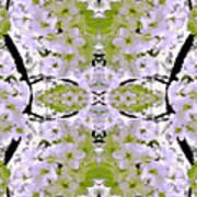 Floral Mural Art Print
