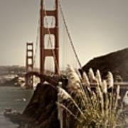 Golden Gate Bridge Art Print by Melanie Viola