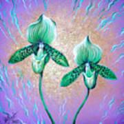 2 Green Orchids. Sunrise Art Print