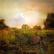 Hilltop Meadow Art Print