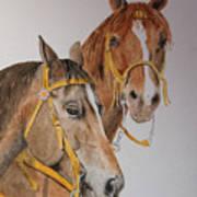 2 Horses Art Print