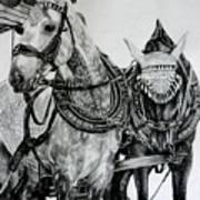 2 Horses Of Rothenburg 2000usd Art Print
