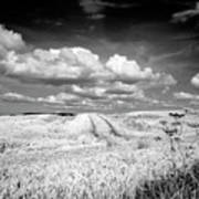 Infrared Landscape In Norway Art Print