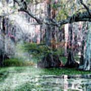 Lake Martin La Art Print