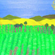 Lavender Field Art Print