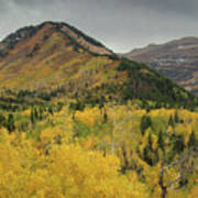 Mount Timpanogos Fall Colors Art Print