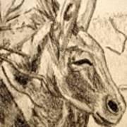 Oatman Burro Art Print