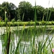 Pond At Beaver Island State Park In New York Art Print