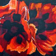 2 Poppies Art Print