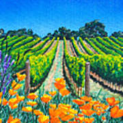 Presidio Vineyard Art Print