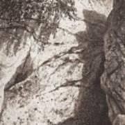 Scala 1892 27h16 Ivan Ivanovich Shishkin Art Print