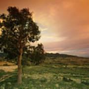 Spanish Landscape Art Print