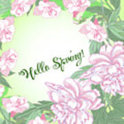 Spring  Background With White And Pink Peony Art Print