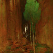 Spring In A Narrow Gorge  Art Print