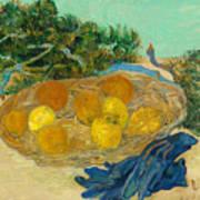 Still Life Of Oranges And Lemons With Blue Gloves Art Print