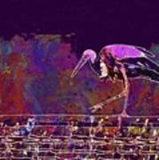 Stork Bird Fly Plumage Nature  Art Print