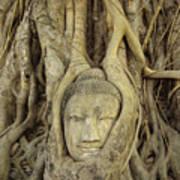 Thailand, Ayathaya Art Print
