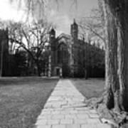 University Of Michigan Law Quad Art Print