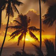 View Of Tahiti Art Print