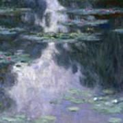 Water Lilies Nympheas Art Print