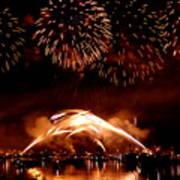 2008 Fireworks 4 Art Print