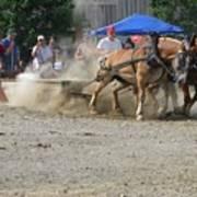 2009 Horse Pull Team A Art Print