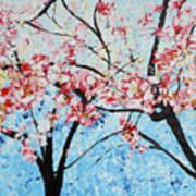 201726 Cherry Blossoms Art Print