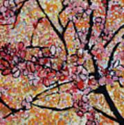 201727 Cherry Blossoms Art Print