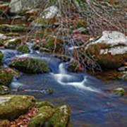 Great Smoky Mountains National Park Art Print