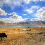 Xinjiang Province China Art Print