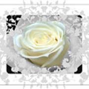Wedding Rose Collection  Art Print