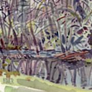 Alder Creek Art Print