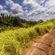 Bali Landscape Art Print
