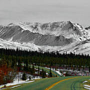 Denali Park - Alaska Art Print